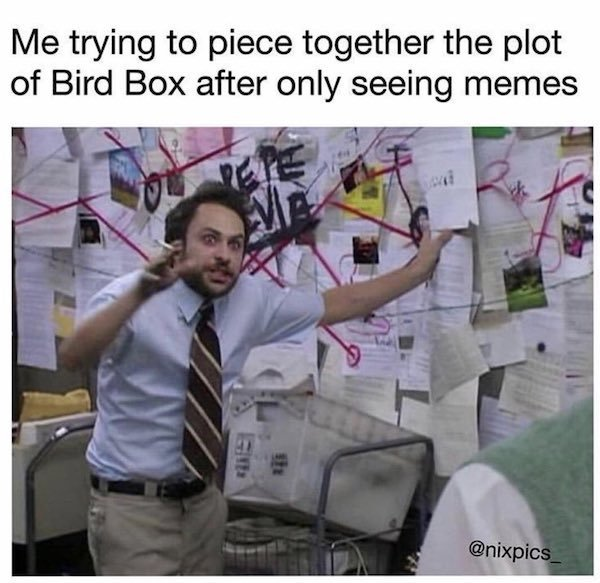 bird-box-has-been-a-netflix-hit-and-the-memes-keep-rolling-in-20-photos-6.jpg