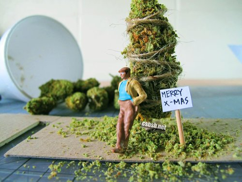 christmas-tree-marijuana.jpg