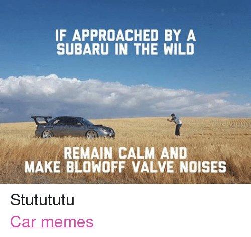 Facebook-Stutututu-Car-memes-953342.jpg