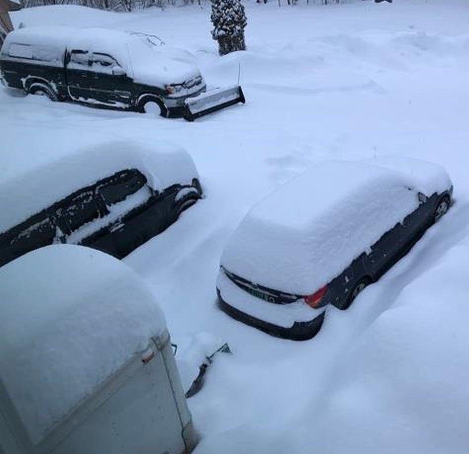 Gojira_snow.jpg