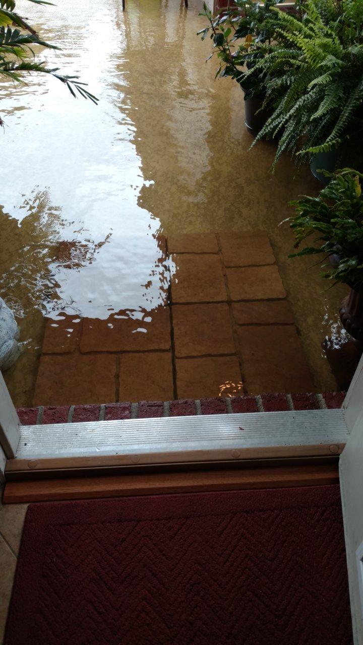 Harvey Back Door.jpg