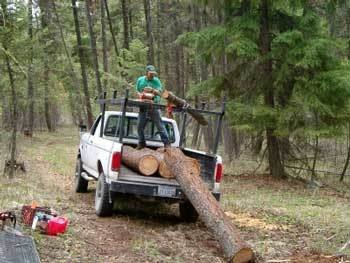 Lewis-Pull-log-into-truck-WEB.jpg