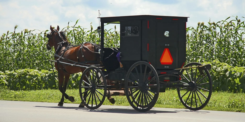 o-AMISH-HORSE-AND-BUGGY-facebook-1024x512.jpg