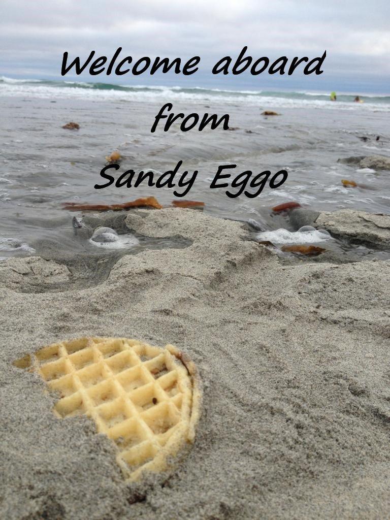 Sandy Eggo.jpg
