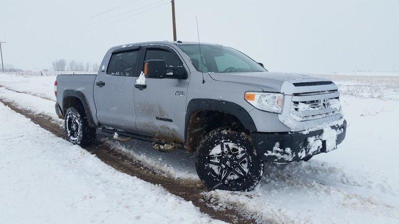 snow 8.jpg