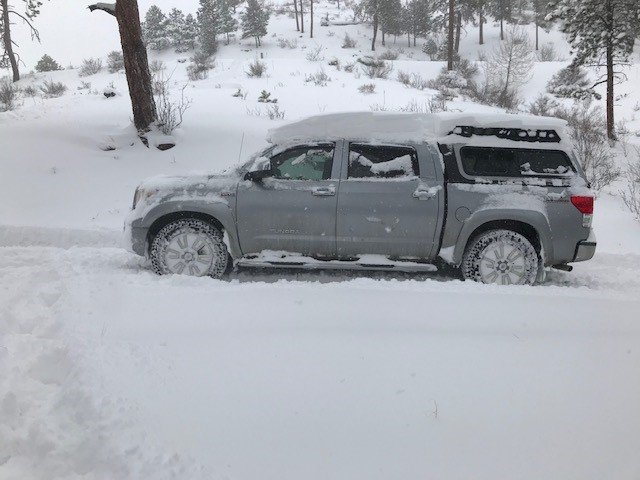 snowy day 1.jpg
