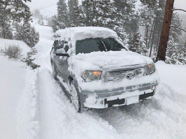snowy day 2.jpg
