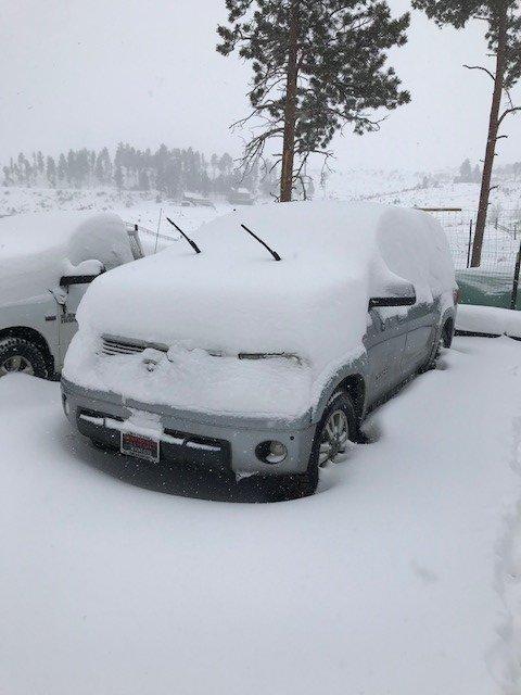 snowy day 3.jpg