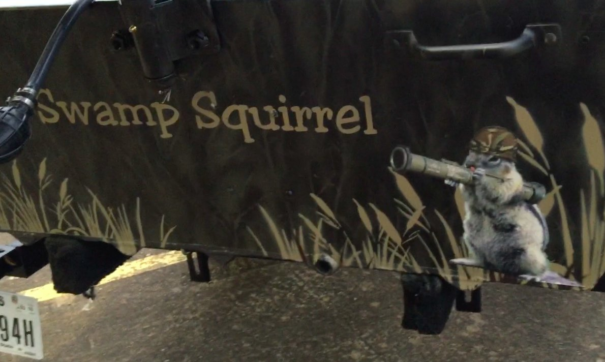Swamp Squirle.jpg